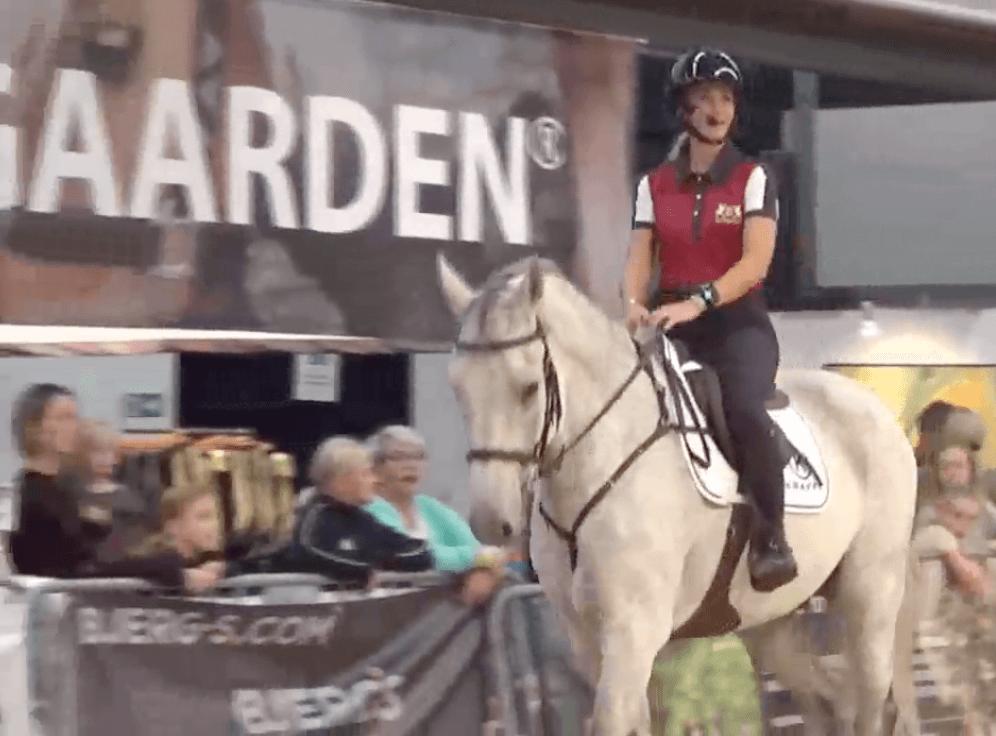 PIxio i Hillerød Horse Show med Tina Lund
